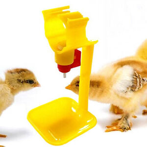 5pcs Poultry Chicken Duck Hanging Drinking Nipple Water Drinker Feeder With Cup
