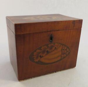 Antique Georgian Cork Lined Double Conch Shell Motif Tea Caddy