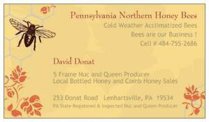 Northern Honey Bees For Sale Overwintered In Pa Nuc Hive Colony