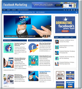 Facebook Marketing Turnkey Website Business Earn From Affiliate Adsense