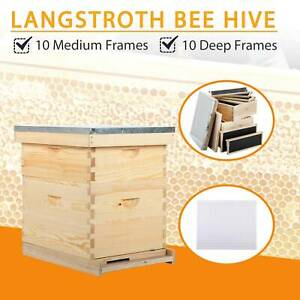 Upgraded 10 frame Size Beehive Frames Honey Hive 20 Frames W queen Excluder
