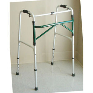 Adult Walker 1 Ea