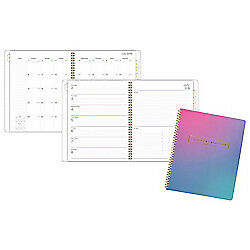 At a glance r Ariel Premium 13 month Weekly monthly Planner 8 1 2in X 11in