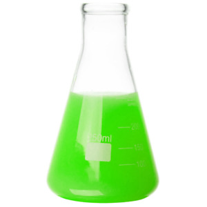 Glass Erlenmeyer Flask 250ml Set Of 6