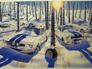 Shelby Mustang Gt350 Gt500 Art 1965 1966 1967 1968 289 428 Ford Michael Irvine