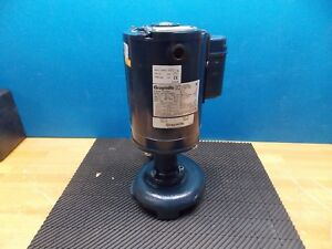 Graymills Immersion Recirculating Pump 1 2 Hp 160 Gpm 115 230 V Model tn41 e