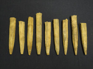 Great Lot Of 9 Antique Hand Hewn Timber Frame Barn Beam Pegs Of Various Lengths
