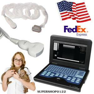 Usa Veterinary B ultrasound Diagnostic System Small Animal Cardiac Convex Probe