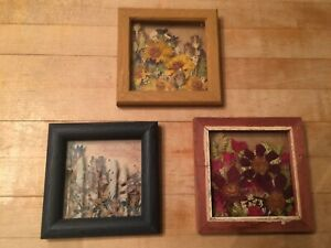 Dried Flower Art Decor Set Of 3 Country Rustic Re Purposed Glass Window Panes