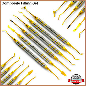 Composite Filling Amalgam Placement Restoration Instruments Dentist Tools 6pcs