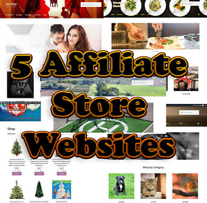 5 Affiliate Websites In One With 1 Year Hosting