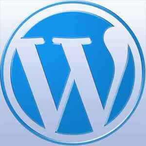 Any Wordpress Blog Website Theme And Plugins Installed Free 1 Year Hosting