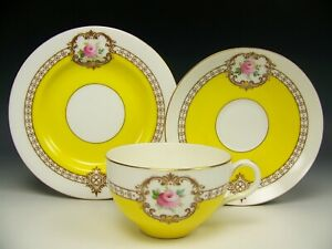 Royal Worcester Yellow Hand Painted Roses Gold Trio Plate Tea Cup