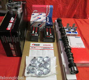 Ford 200 Master Engine Kit 3 3l 1976 77 78 79 80 81 82 83 Pistons Cam No Gask