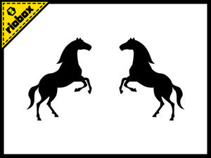 2x Wild Horse Vinyl Decals Stickers For Car Window Laptop Skateboard