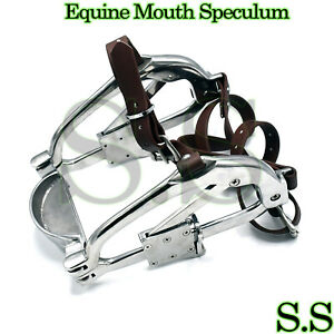 Mouth Speculum Horse Dental Equine Stainless Steel Forging Caps Style Vt 1119