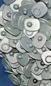 500 Gray Checkpoint Rf 8 2mhz Retail Hard Mini Security Tags Pins Garments New