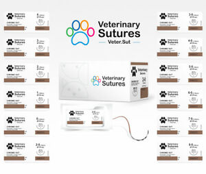 Veterinary Sutures Chromic Gut 0 1 2 36mm Taper Point Surgical Sutures