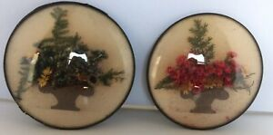 Vintage Set Of Two Dried Flower Convex Bubble Glass Wall Hangings