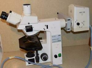 Zeiss Axioskop Upright Light Fluorescence Microscope hb 100 Eyepieces