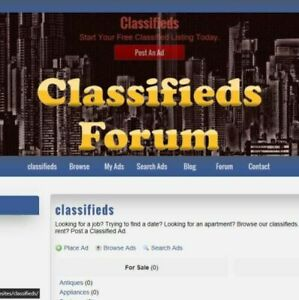 Custom Made Professional Classifieds Ads Website Business