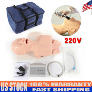Professional Manikin Study Nasal Airway Management Trainer Pvc Model Intubation