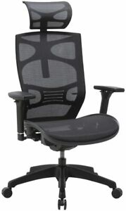 Clatina Ergonomic Mesh Executive Chair With 4d Arm Rest Back Swivel For Office