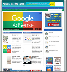 Adsense Tips Profitable Website Unlimited Products Affiliate Store
