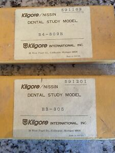 Kilgore Nissan Dental Sudy Models Primary And Perm Teeth Anatomical