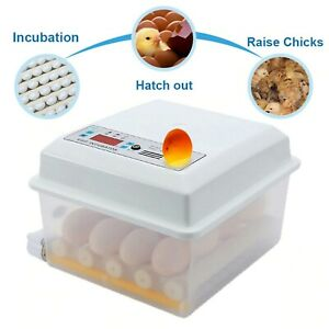 Fully Automatic Incubator Of 16 Eggs Goose chicken duck quail 110 220v
