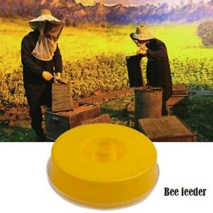Honey Entrance Disc Feeder Beekeeping Cap Feeder Beekeeper Equip Hive Tool Us