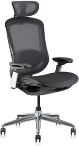 Ekstere Executive Office Chair Mesh Swivel With 4d Adjustable Armrest And Lumbar