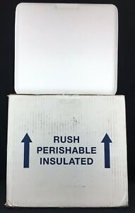 Medium Insulated Cold Pack Cold Shipper Box Styrofoam Cooler Cold Medical Camp