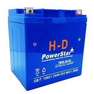 Ytx30l bs Maintenance Free Sealed Agm Motorcycle Battery 3 Year Warranty