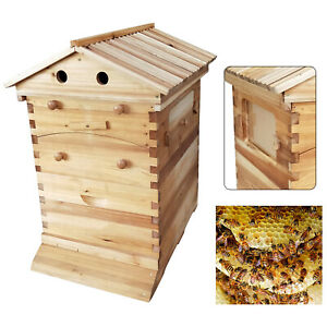 Auto Honey Frames Beehive Beekeeping Brood Wooden Box Bee Hive House Kit Usa