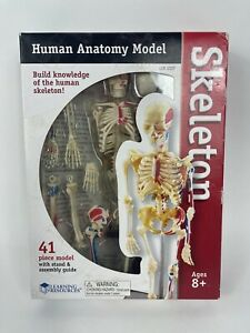 Learning Resources Human Anatomy Model Skeleton 41 Pieces Brand New