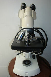 Carl Zeiss Binocular Compound Microscope With Light Source
