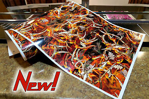 Gloss Camo Decal Made From 3m Wrap Vinyl Truck Camo Tree Print Camouflage Blaze