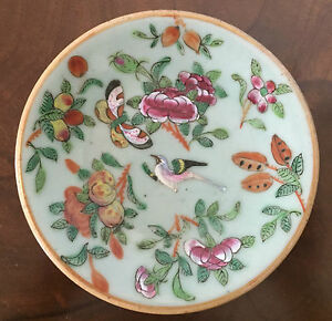 Chinese Porcelain Plate Celadon Famille Rose Butterfly Bird 19th C Export 1820