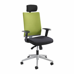 Tez Manager Chair With Headrest Green 1 Ea