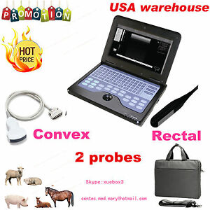Vet Veterinary Ultrasound Scanner For Equine cows sheep Use Rectal convex Probe