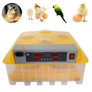 48 egg Temperature Control Practical Peep Hole Fully Automatic Poultry Incubator
