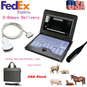 Us Seller Vet Veterinary Ultrasound Scanner For Animal Use Rectal convex Probe