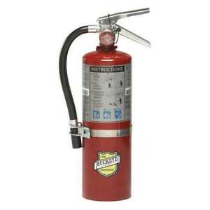 Buckeye 5 Lb Abc Fire Extinguisher Rechargeable Tagged Ul Rating 3a 40b c