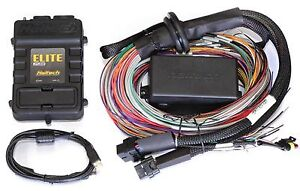 Haltech Harness In Stock | Replacement Auto Auto Parts Ready