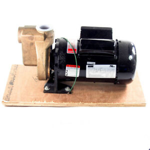 2 Hp Bronze Centrifugal Pump 115 208 230vac 1 Phase 1 1 2 Npt 3 8 Solids