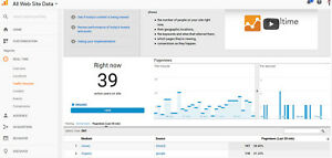 Dominate Google 500 000 Keywords Targeted Traffic For 5 Months And Boost Alexa