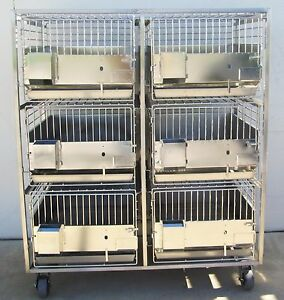 6 Stainless Steel Kennels Animal Dog Cat Cages On Stainless Mobile Cart Nice