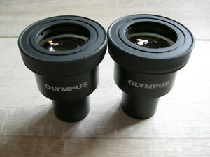 Pairs Of Olympus 10x 18 Eyepieces For Cx Ckx Microscopes