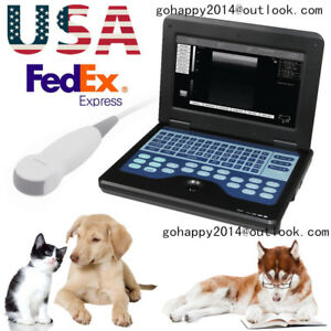 Vet Veterinary Ultrasound Scanner Micro convex Small Animals Cms600p2 vet Usa